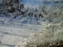 2006 big snow