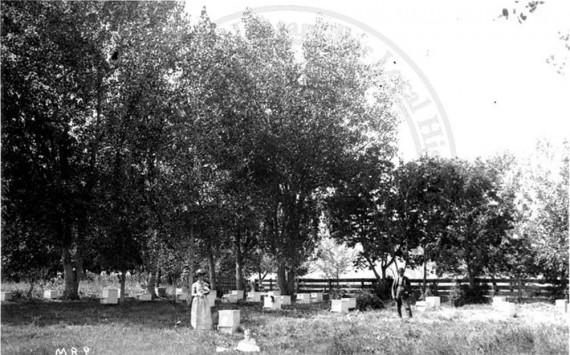 Sturtevant, J. B. (Joseph Bevier), 1851-1910 (Boulder, Colo.) Photographer